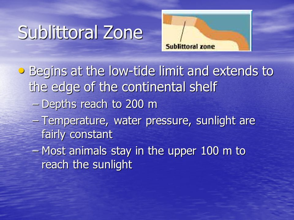 Sublittoral Zone Begins at the low-tide limit and extends to the edge of the continental shelf. Depths reach to 200 m.