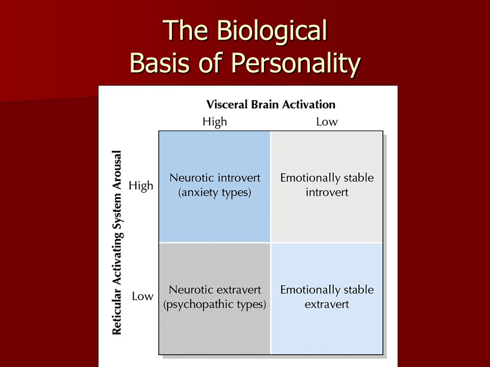 Biological development of a personality