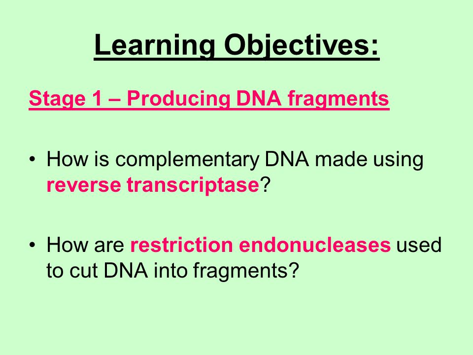 Learning Objectives: Stage 1 – Producing DNA fragments