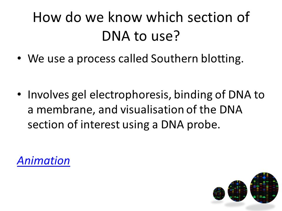 How do we know which section of DNA to use