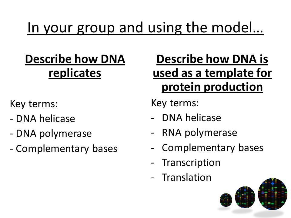In your group and using the model…