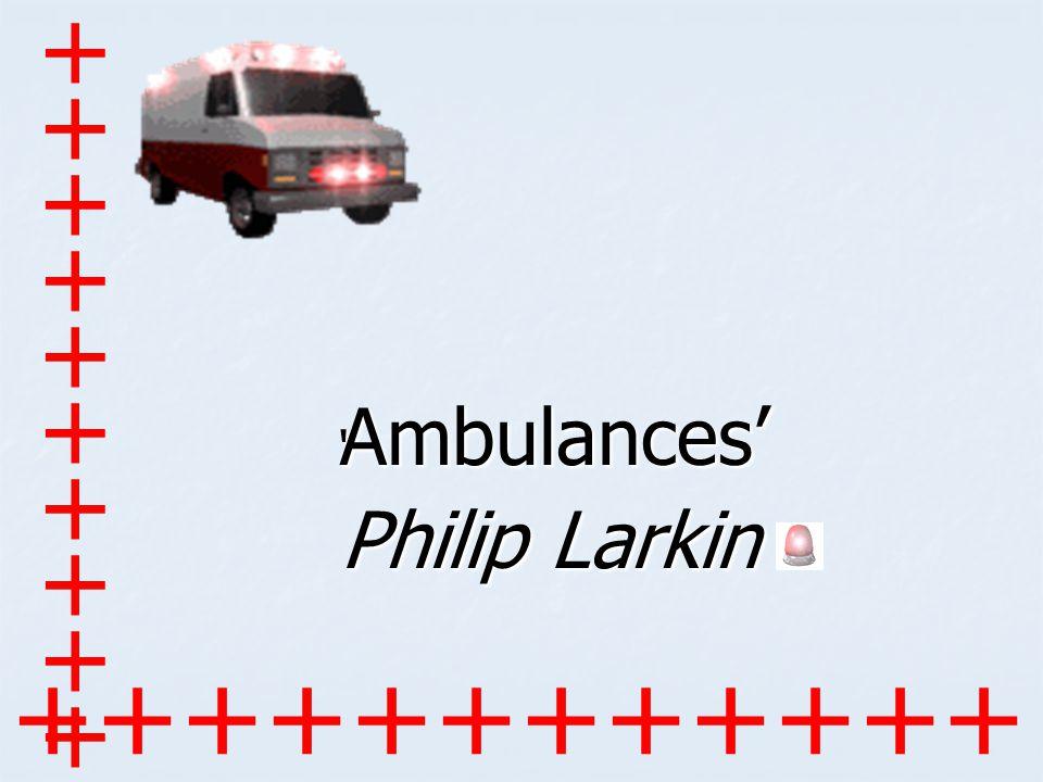 explication phllip larkin s cut grass