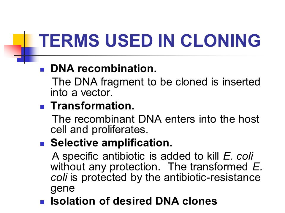 uses of genetic recombination Chapter 6 genetic recombination and genetic engineering we use your linkedin profile and activity data to personalize ads and to show you more relevant ads.