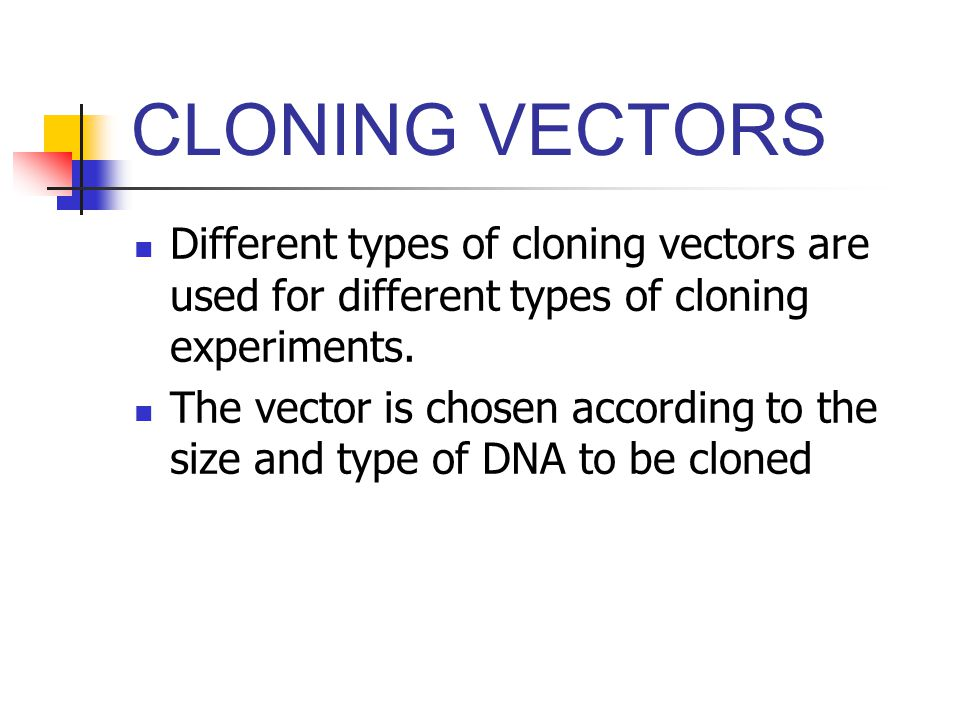 a discussion of the benefits of cloning and its importance Cloning in its simplest sense refers to a precise genetic copy of a molecule, cell, plant, animal, or human being 1'4 there are, however, four separate ways to clone 5.