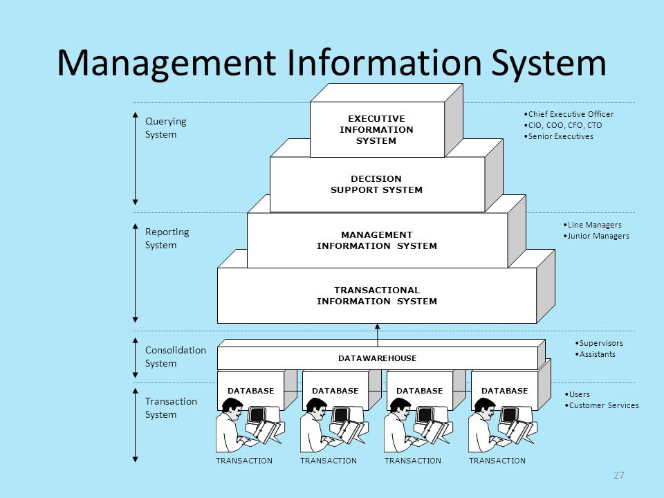 manager information system
