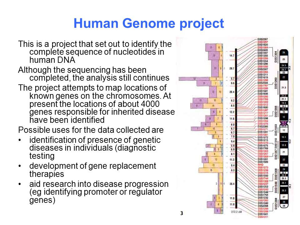 Human Genome project This is a project that set out to identify the complete sequence of nucleotides in human DNA.