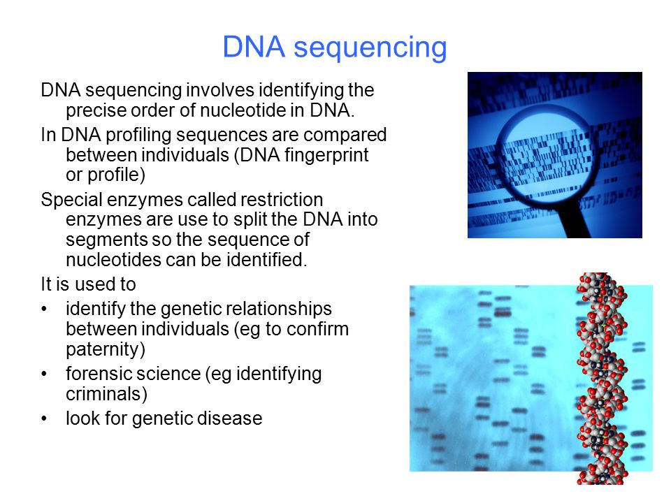 DNA sequencing DNA sequencing involves identifying the precise order of nucleotide in DNA.