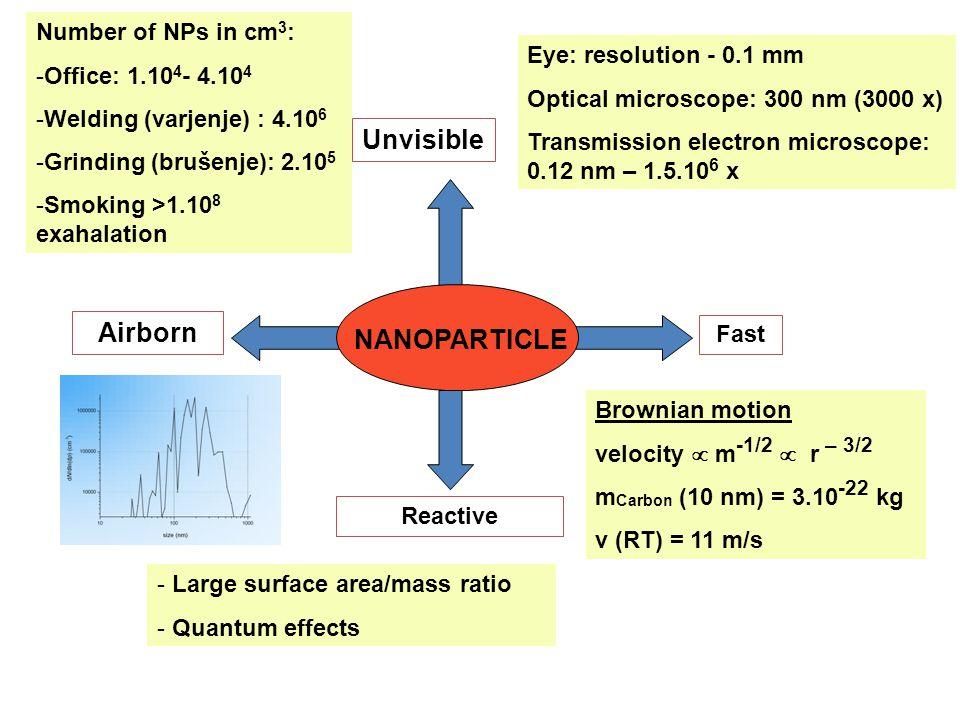 Fugenbewegungen bei Betonfahrbahnen und ihre Abhängigkeit von der Temperatur bei unterschiedlicher Oberflächenbeschaffenheit