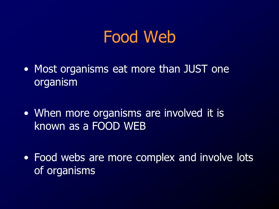 Food Web Most organisms eat more than JUST one organism