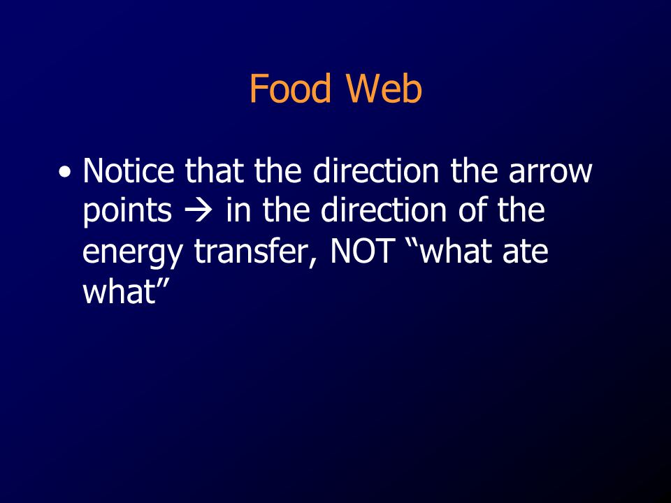 Food Web Notice that the direction the arrow points  in the direction of the energy transfer, NOT what ate what