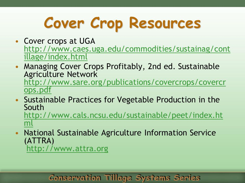 Cover Crop Resources Cover crops at UGA