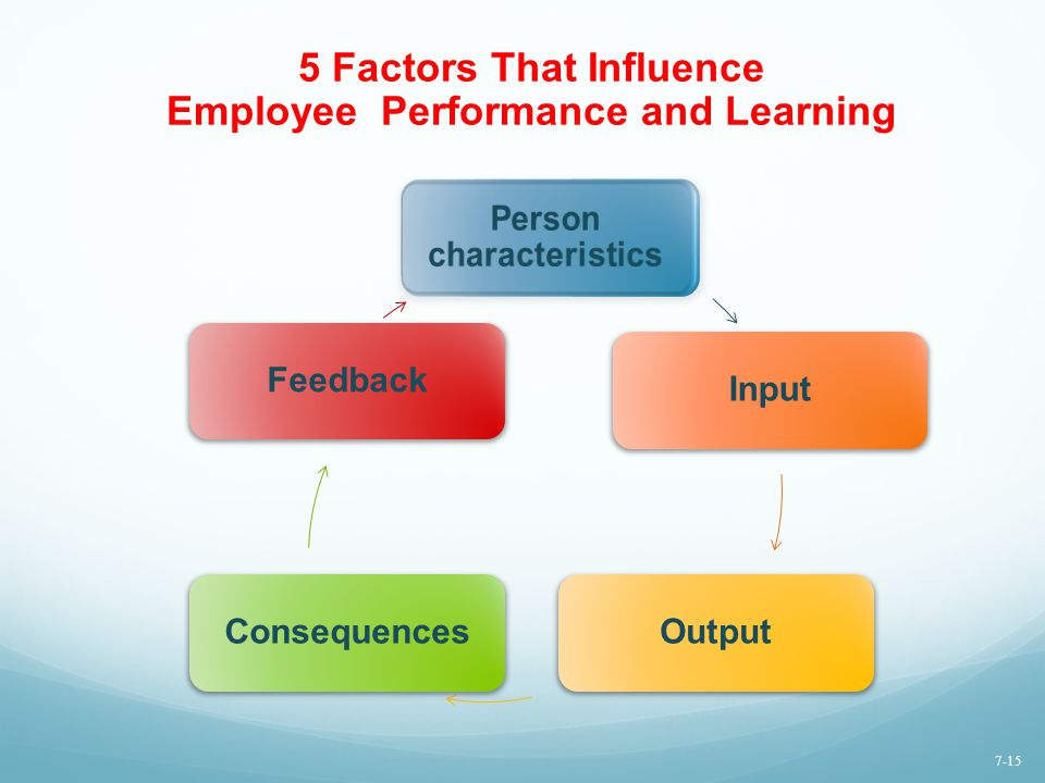 5 Factors That Influence Employee Performance and Learning