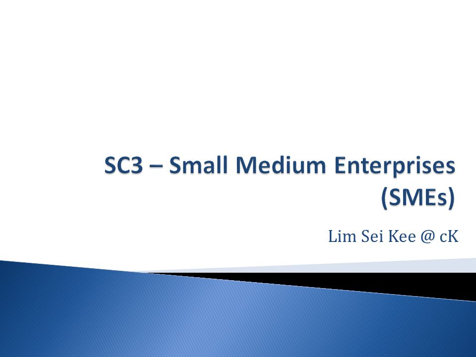 Sc  Small Medium Enterprises Smes  Ppt Video Online Download