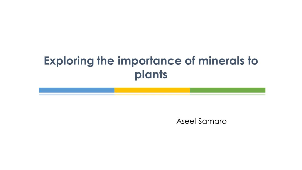 Exploring the importance of minerals to plants ppt video for Importance of soil minerals
