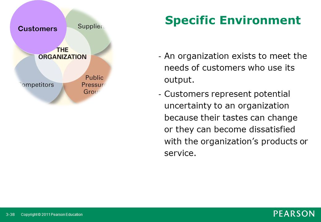 Customers Specific Environment. An organization exists to meet the needs of customers who use its output.