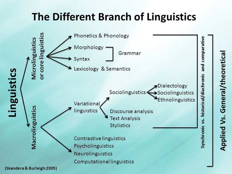 an analysis of semantics from a computational linguistics perspective Winter 2018 it will be held as one of the an analysis of semantics from a computational linguistics perspective workshops of the jsai.