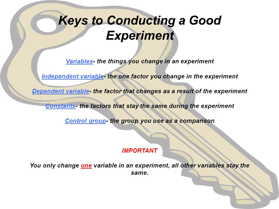 Why Is A Control Group Important In An Experiment 113