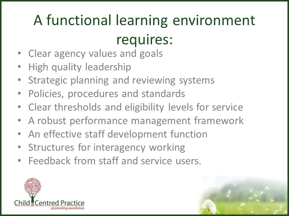functional area 3 learning environment Mgmt 590 - chapter 3  advantage of opportunities in the external environment in ways that create value for customers  separately from specific functional.