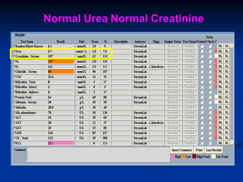 Normal Urea Normal Creatinine