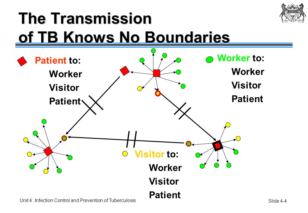 The Transmission of TB Knows No Boundaries