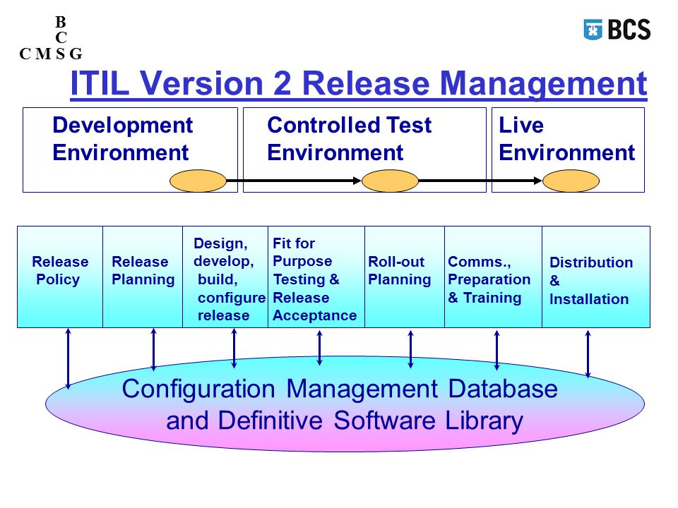 Software version management strategy