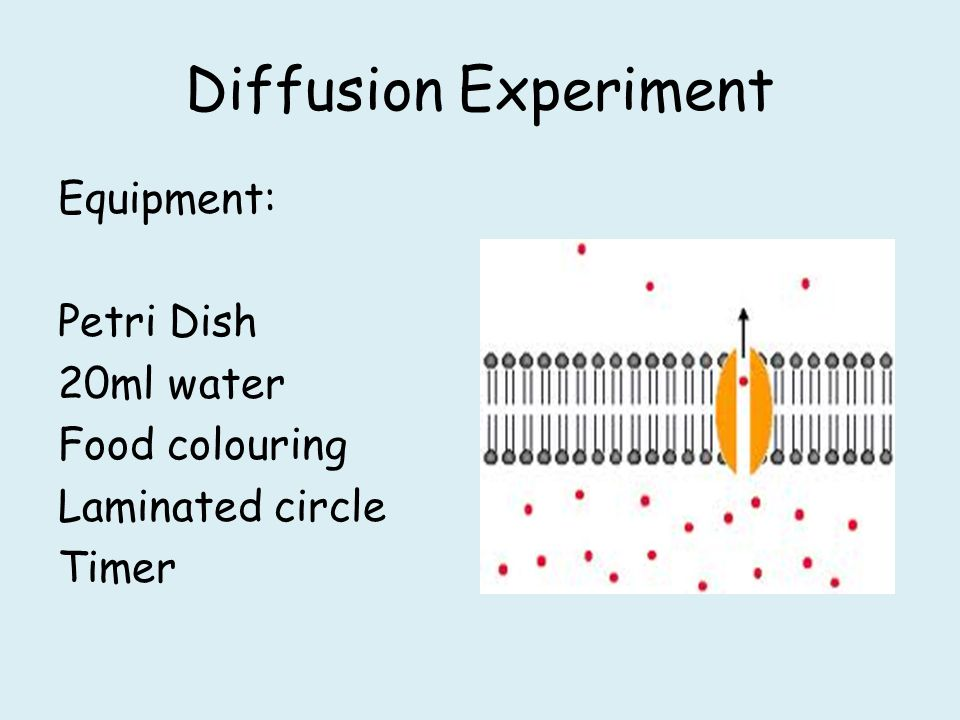 diffusion lab food coloring in water Diffusionlab-part2rtf diffusion lab - part 2 food coloring and water materials: food coloring, beaker of water procedure: place one drop of food coloring into a.