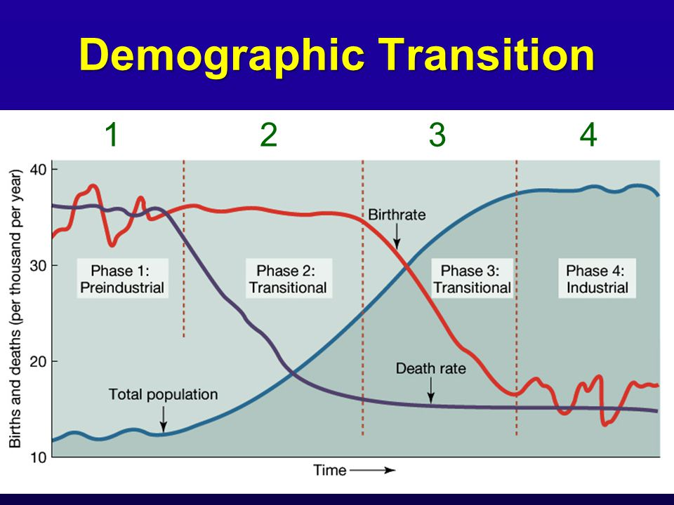 """demography and demographic transition phase The theory of demographic transition explains the effects of changes in birth rate and death rate on the growth rate of population according to eg dolan, """"demographic transition refers to a population cycle that begins with a fall in the death rate, continues with a phase of rapid population growth and concludes with a decline in the birth rate."""