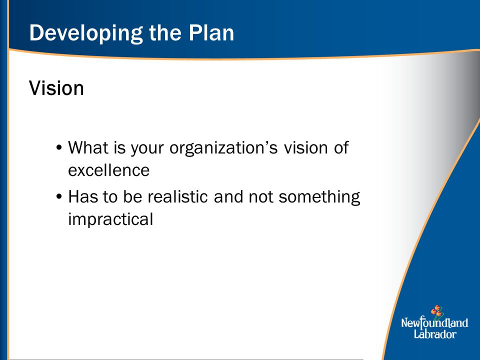 Developing the Plan Vision