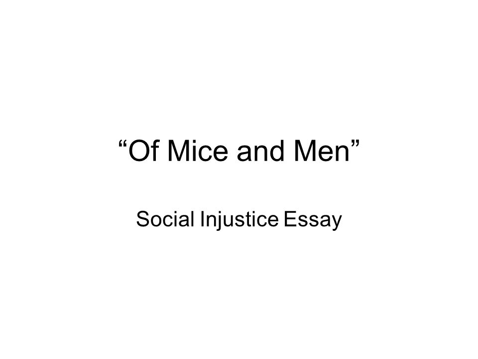 social injustice essay ppt video online  social injustice essay