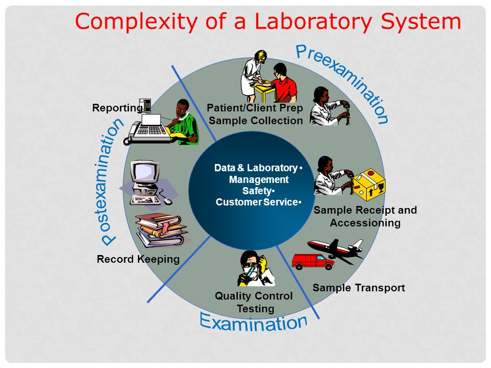 Complexity of a Laboratory System