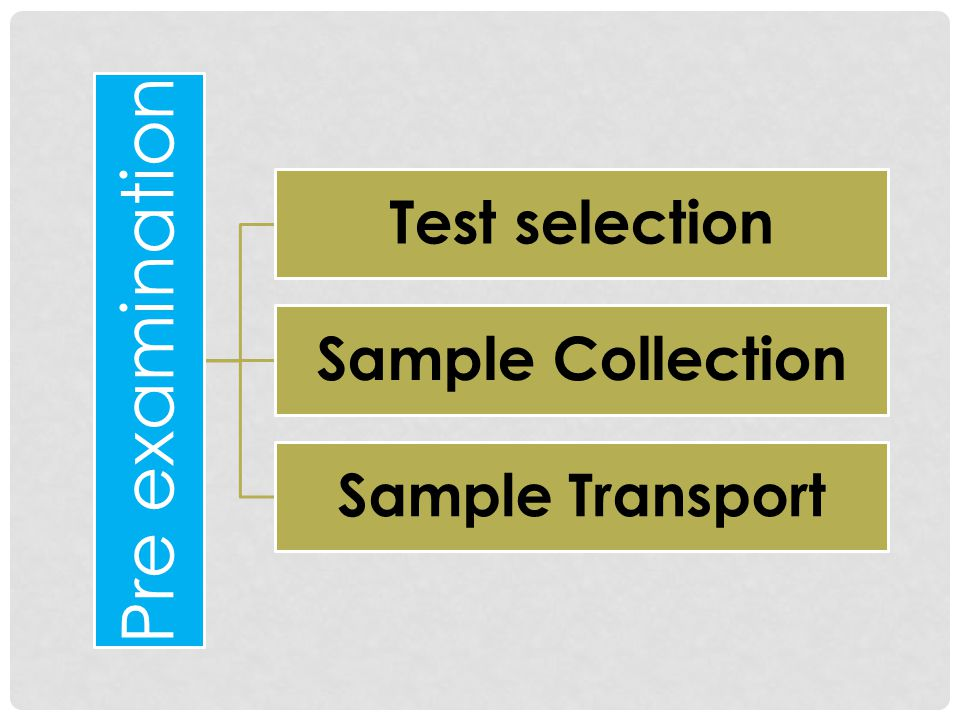 Pre examination Test selection Sample Collection Sample Transport