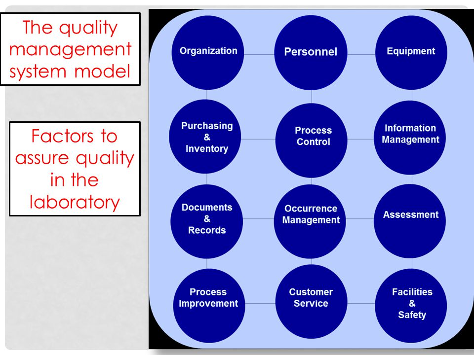 The quality management system model