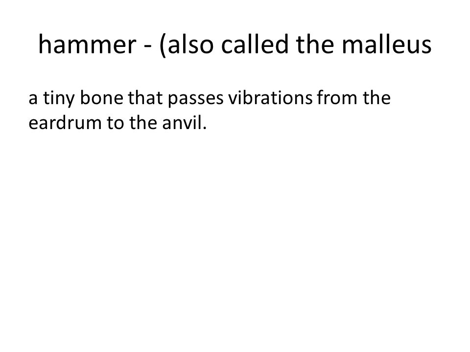 hammer - (also called the malleus