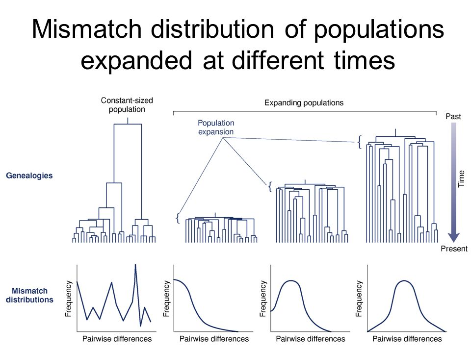 Mismatch distribution of populations expanded at different times