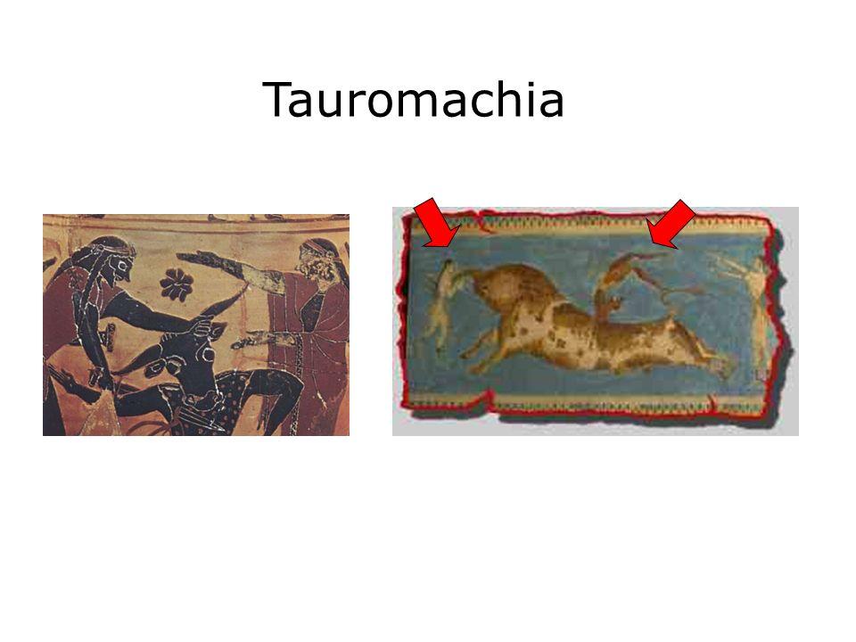 Tauromachia