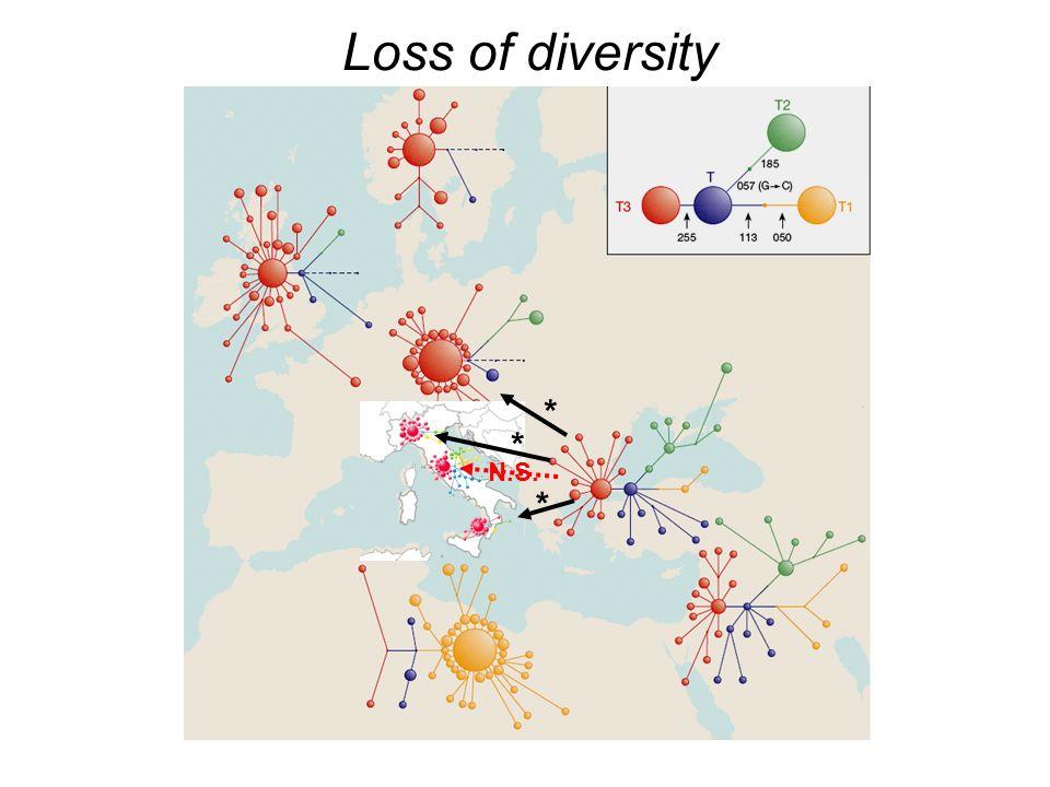 Loss of diversity * N.S.