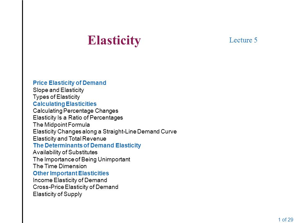 Elasticity Lecture 5 Price Elasticity Of Demand Slope And