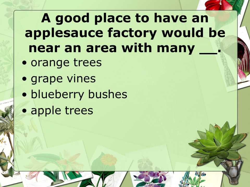 A good place to have an applesauce factory would be near an area with many __.