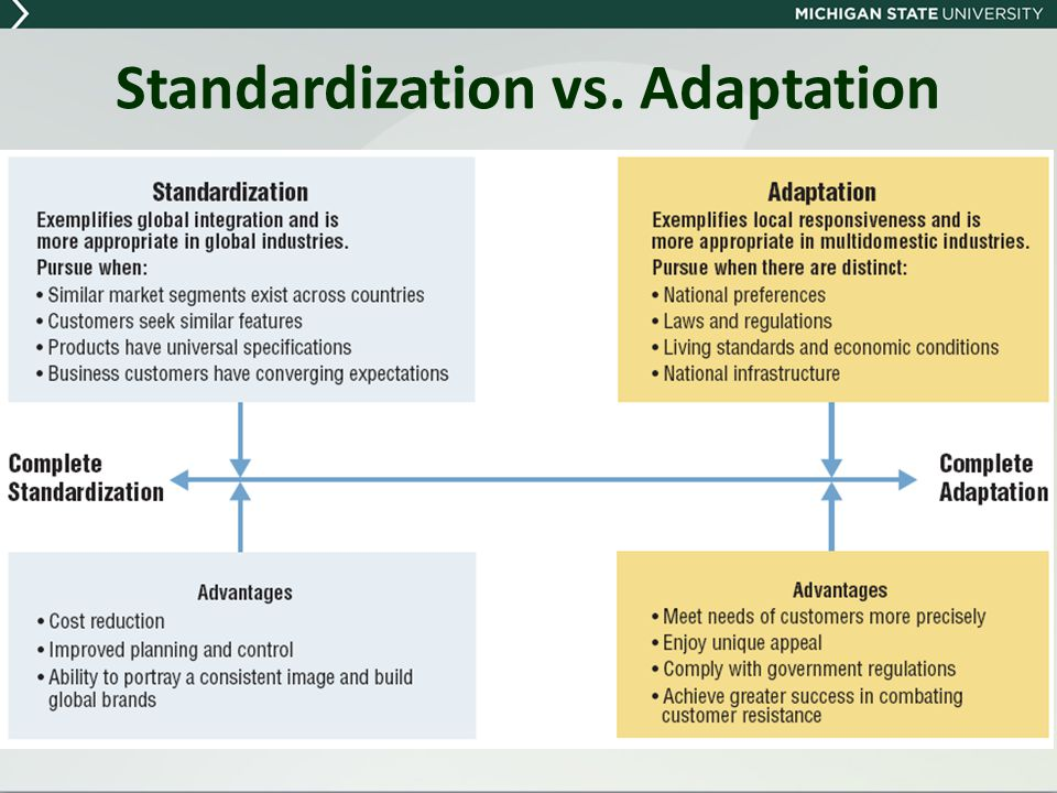 Advantage & Disadvantages of Standardisation and Adaptation Strategies