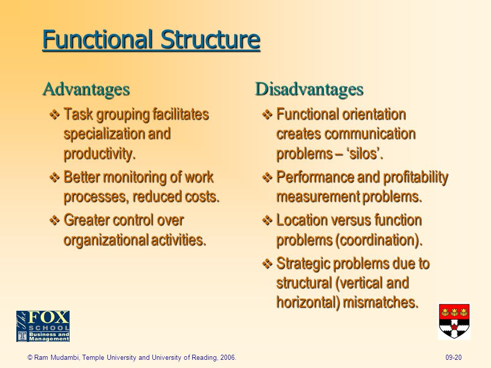 advantages and disadvantages of functional structure They include a functional structure,  we will write a custom essay sample on what are the advantages and disadvantages of the  the advantages and disadvantages.