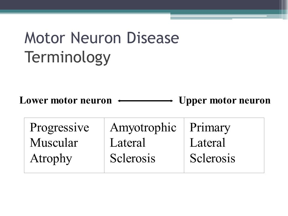 Infections of the nervous system ppt download for Bulbar motor neuron disease