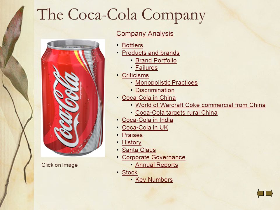 coca cola summary