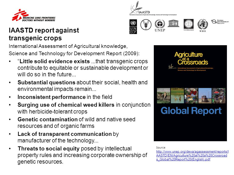 IAASTD report against transgenic crops