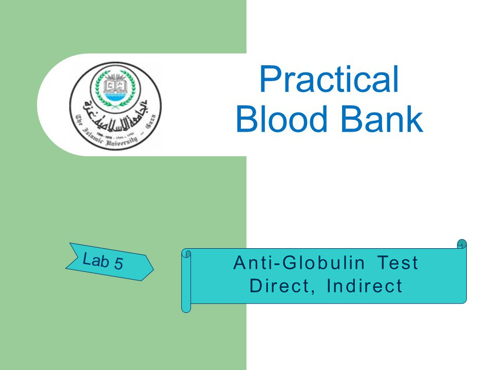 Practical Blood Bank Anti-Globulin Test Direct, Indirect Lab 5