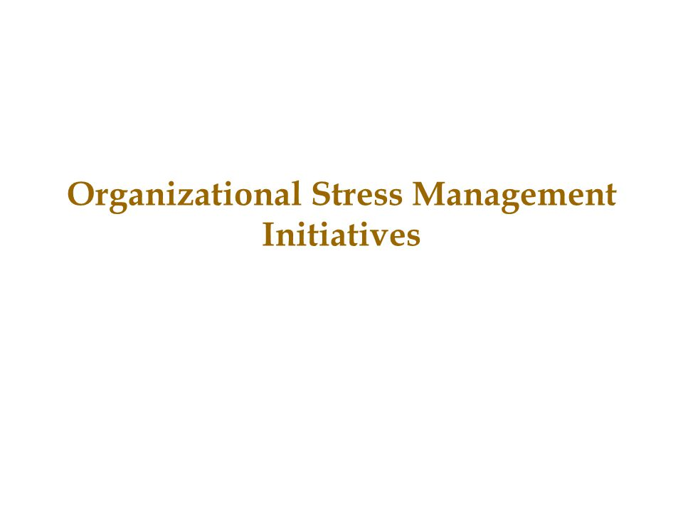 Organizational Stress Management Initiatives