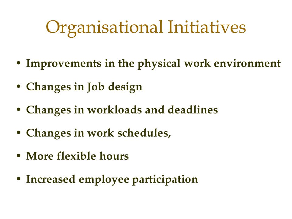 Organisational Initiatives