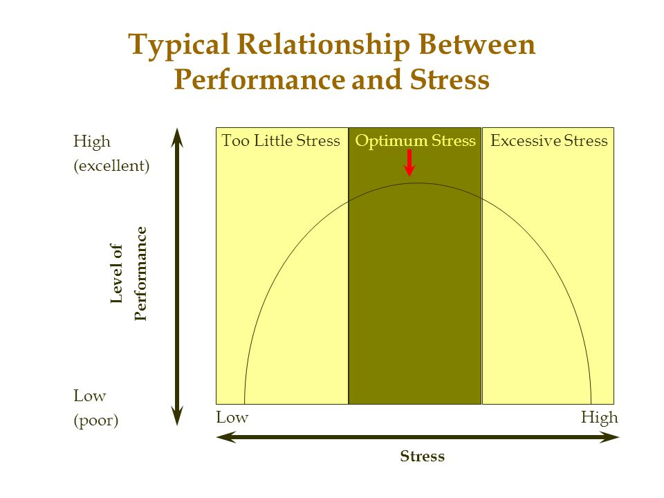 Typical Relationship Between Performance and Stress
