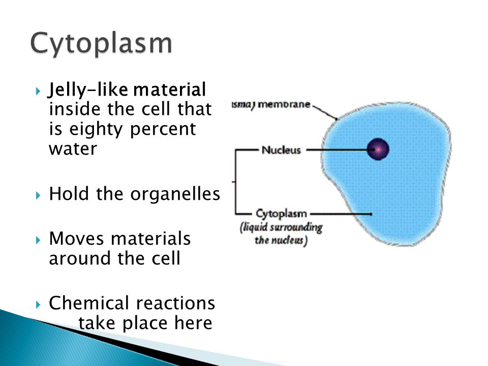 download методические указания к практикуму по органической химии часть
