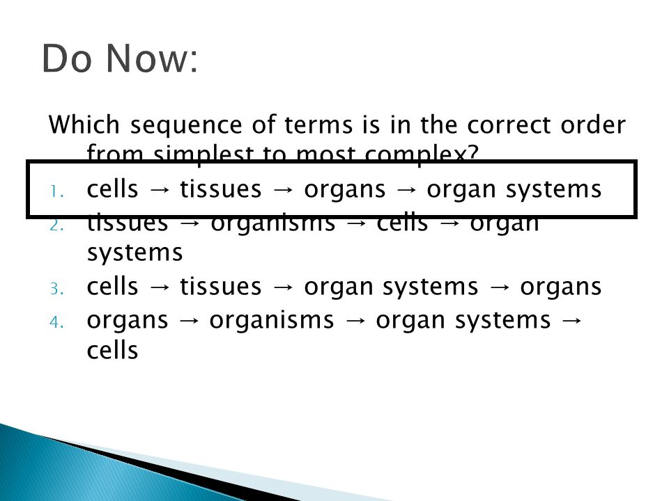 how do organelles impacts a cell s activity ppt video online download. Black Bedroom Furniture Sets. Home Design Ideas