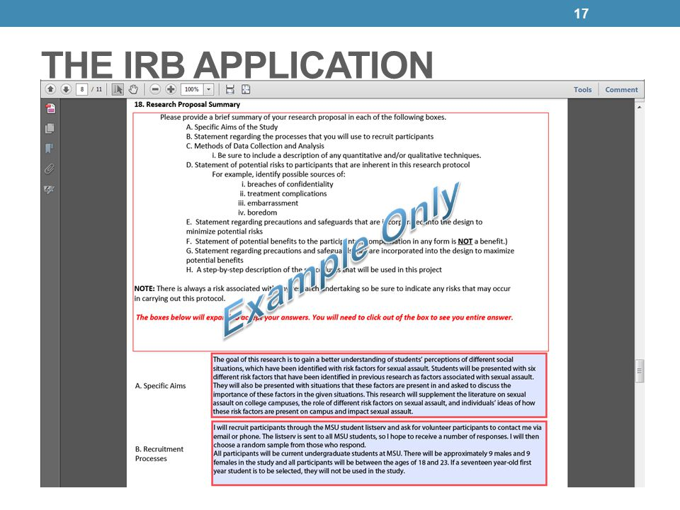 Irb 101 human subjects protection program and irb ppt download 17 the irb application example only pronofoot35fo Images